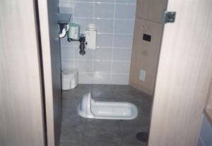 Japanese toilet, Tokyo Hotel