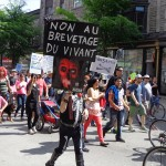 Anti-GMO street protest, Montreal, May 24, 2014