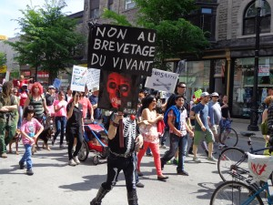 Monsanto protest, Montreal